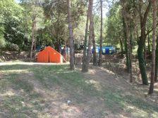Campament júnior